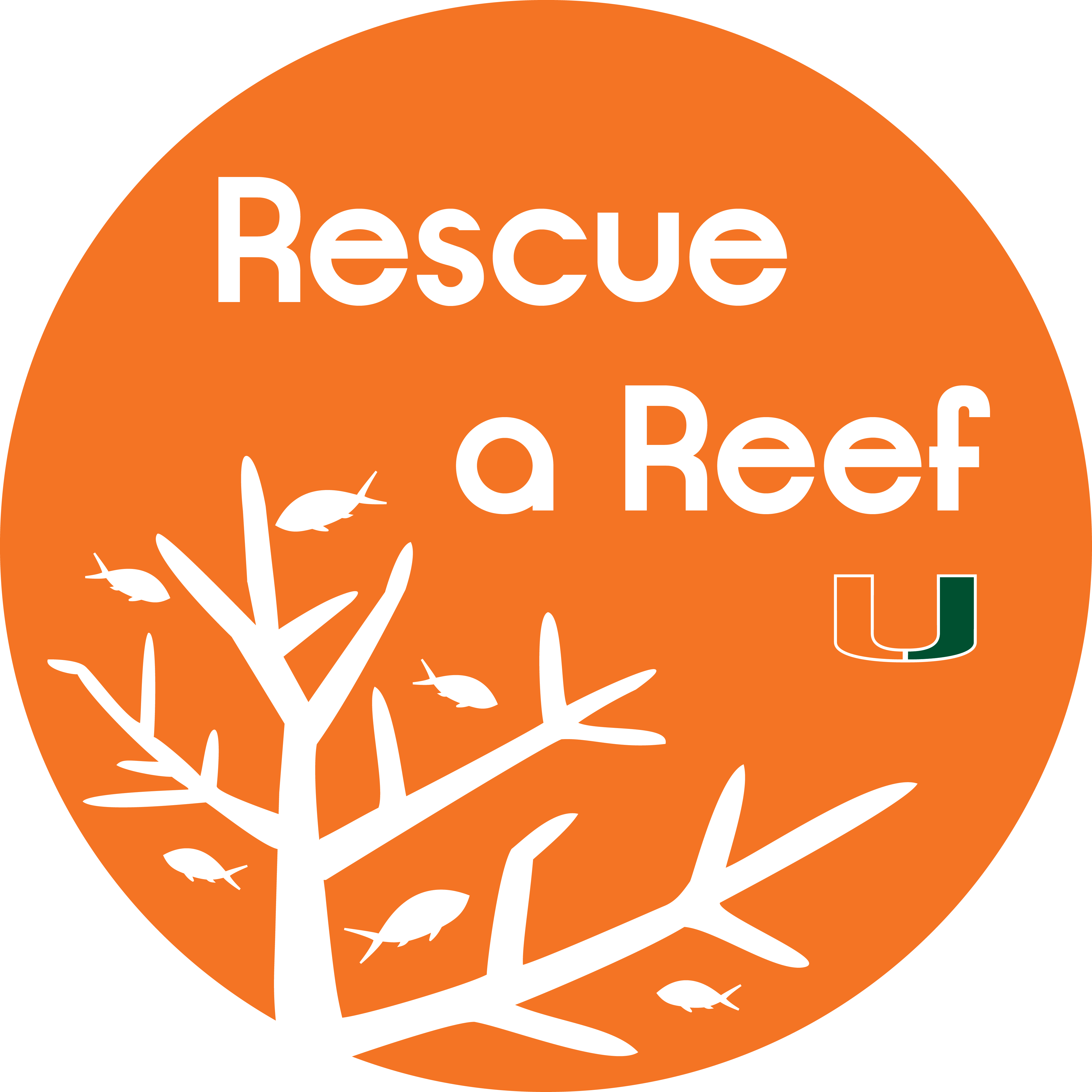 Rescue a Reef