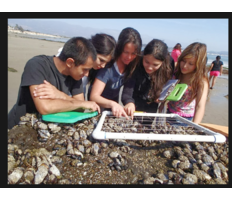 Long-term Monitoring Program and Experiential Training for Students (LiMPETS)